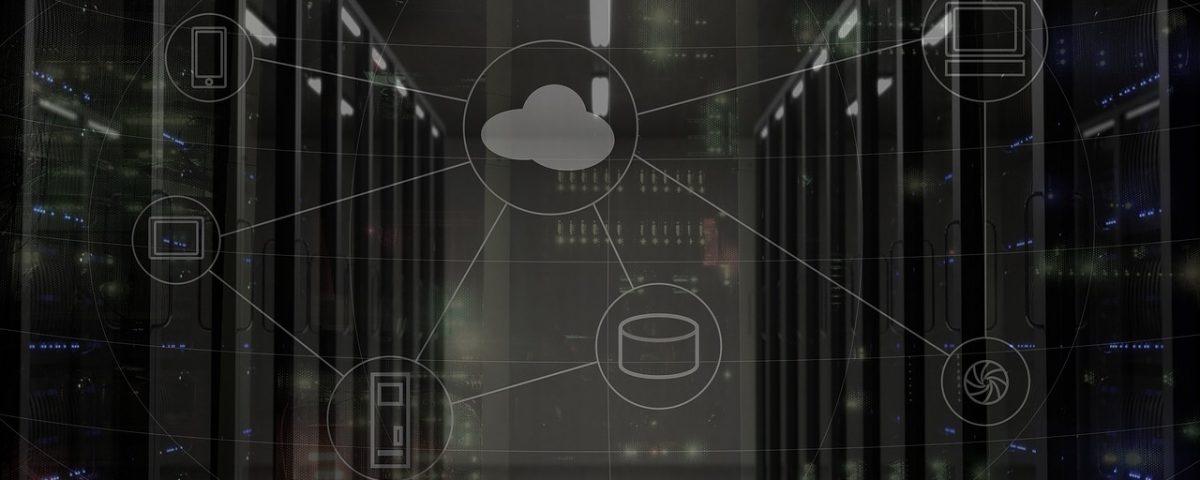 sieć, serwery, serwerownia